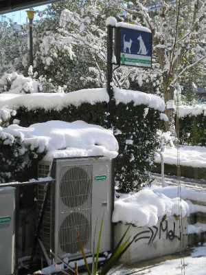 Χιόνια και στο κλιματιστικό του κτηνιατρείου